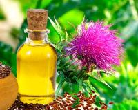 Лечебные свойства масла расторопши
