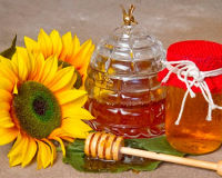 Уникальные свойства меда подсолнечника