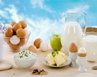 Три диетических блюда из творога яиц и молока