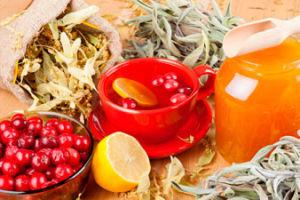 Клюква с медом— лучшее средство для борьбы с простудой