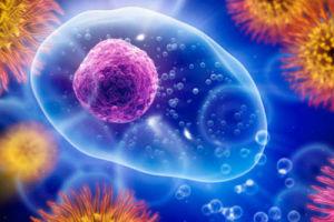 Как повысить иммунитет с помощью правильного питания?