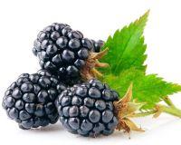 Не только витаминное лакомство, но и маленький «медик»