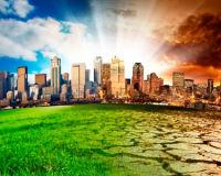 Питание и среда обитания