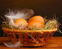 Снесла курочка яичко, простое... но золотое!