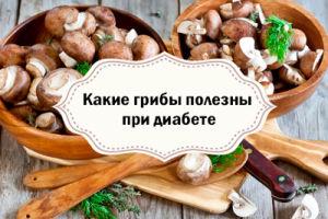 Полезны ли грибы при сахарном диабете?