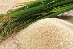 Приготовление риса: советы