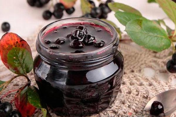 Черное сокровище – ягода от всех болезней черноплодная рябина