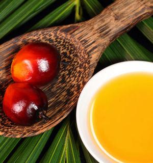 Что собой представляет это загадочное пальмовое масло?