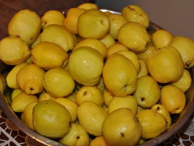 айва плоды