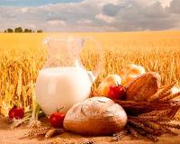 Питание при оксалатных камнях в мочевыводящих путях и почках