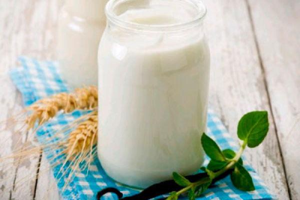 Популярный кисломолочный продукт— кефир