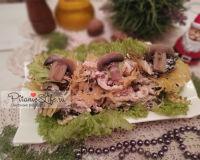 Салат «Лесная сказка»  с черносливом, орехами, куриной грудкой с необычным оформлением