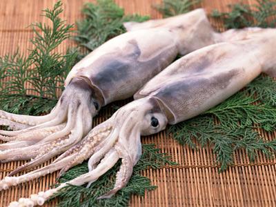 кальмары с укропом